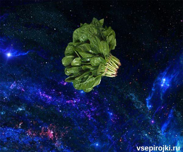 фото шпинат